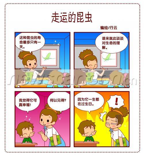 考试复习搞笑图片